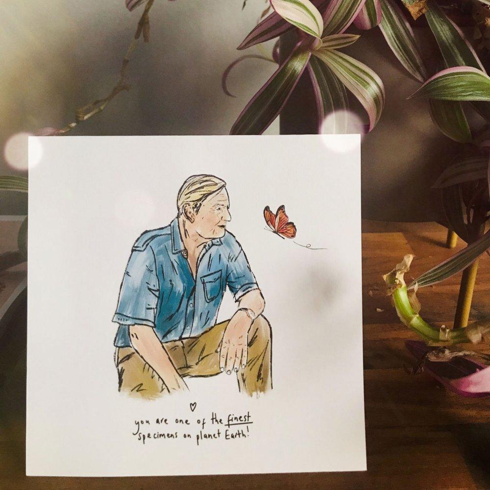 david-attenboreough-card