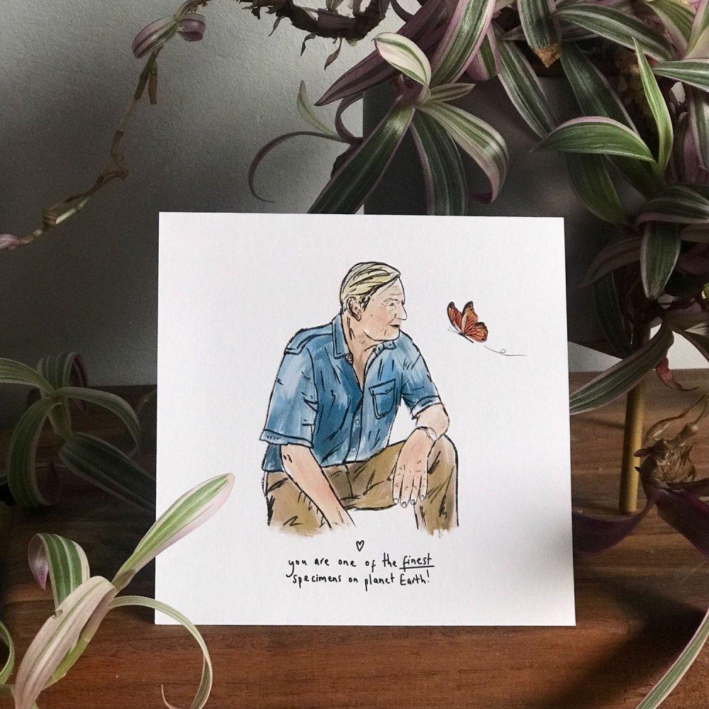 david-attenborough-card-2
