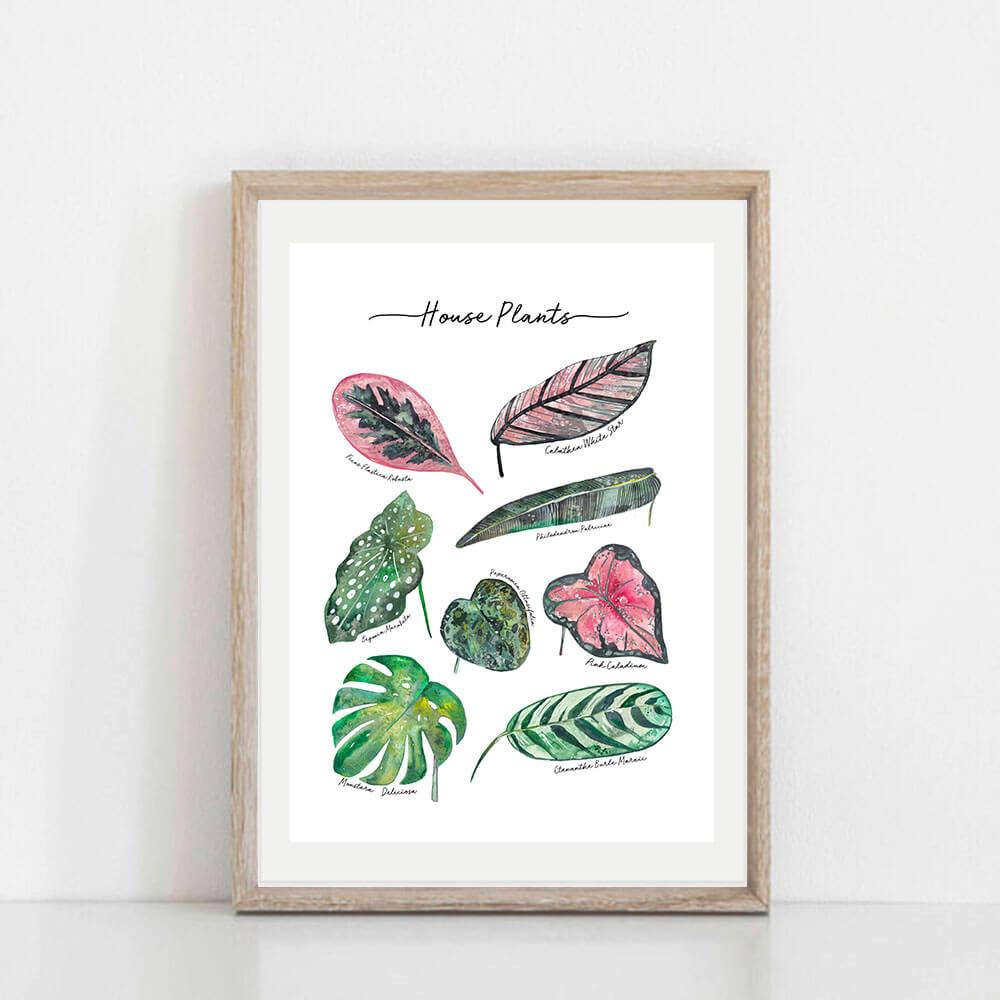 house-plants-frame-art