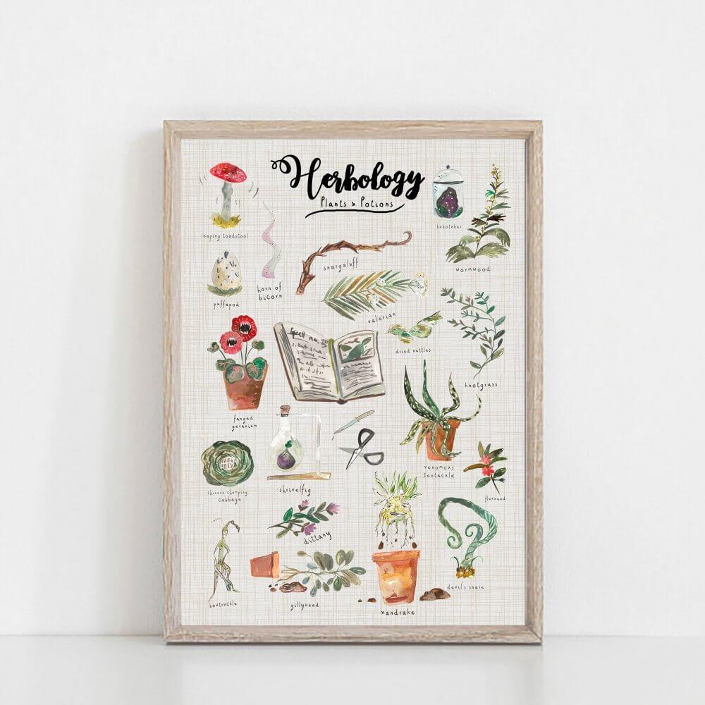 herbology-frame-art-print