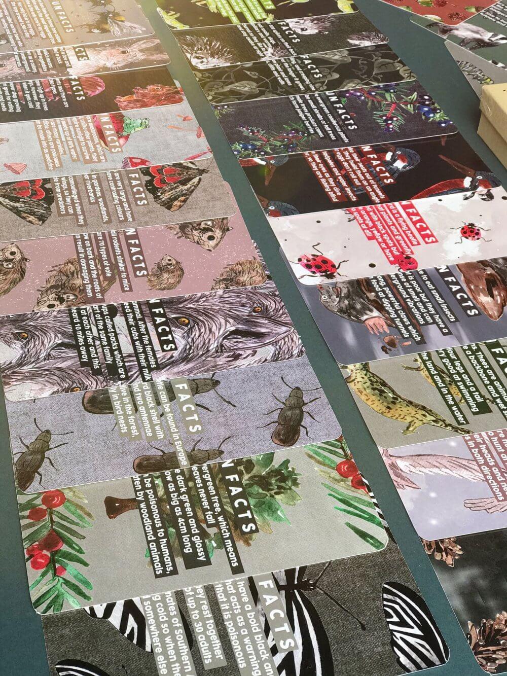 woodland-alpha-flash-cards