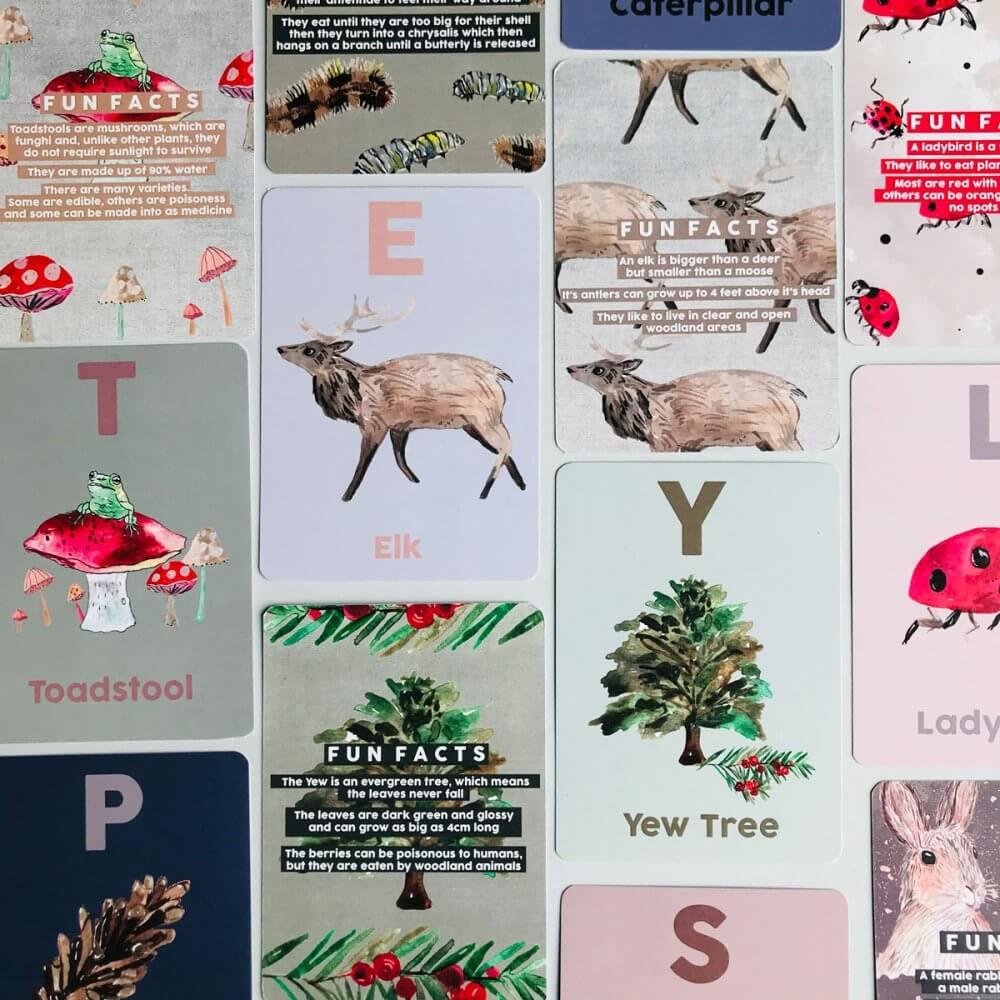 woodland-animal-flash-cards-set